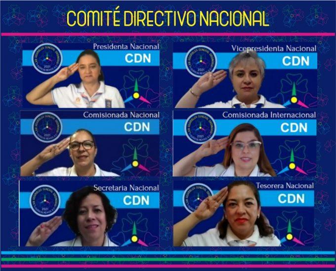CDN web